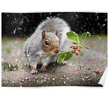 The Christmas Squirrel Poster