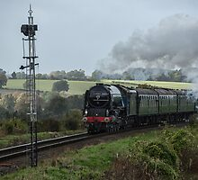 Tornado 60163 on the Watercress Line by Judi Lion