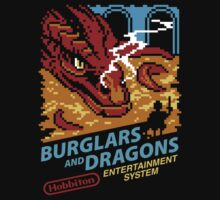 Burglars and Dragons by pacalin
