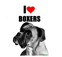 I LOVE BOXERS by Cre8ive-Edge