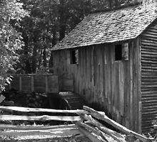 Grist Mill - Cades Cove Tennessee by Tony Wilder
