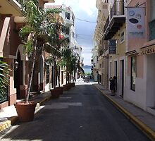 Old San Juan by ideutsch
