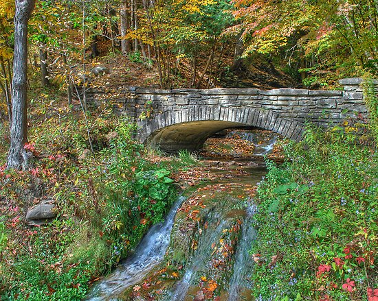 Stone Bridge in Autumn by Ned Elliott