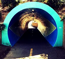 Davis Troll Tunnel by omhafez