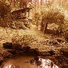 Mardi's Magic Pond by Roz McQuillan