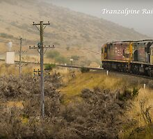TranzAlpine Rail by ken47