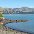 Beautiful Akaroa by PhotosByG