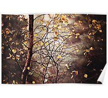 Last days of Autumn Poster
