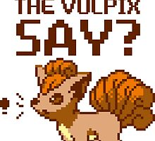 What does the vulpix say? by SaMtRoNiKa