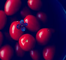 cherry tomatoes by Ingz