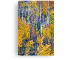 Aspen Tree Magic Cottonwood Pass Canvas Print