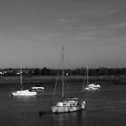 Five Boats (B&W) by Vicki Spindler (VHS Photography)
