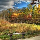 Benched in Autumn by Jimmy Ostgard