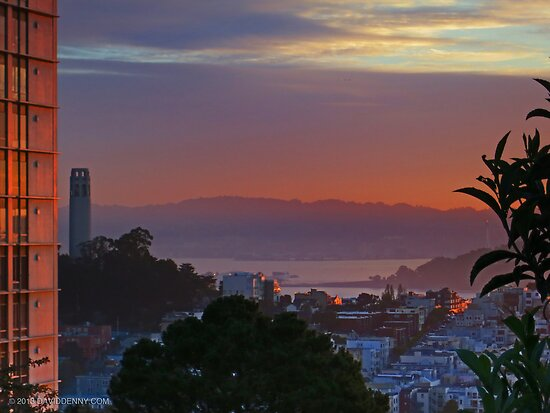Bay Morning by David Denny