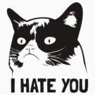 Grumpy Cat hates you! by hannahison