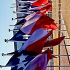 Row of Texas Flags by Warren Paul Harris