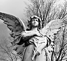 Angel Looking Skyward © by Ethna Gillespie