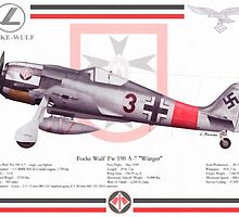 Focke Wulf Fw-190 by A. Hermann
