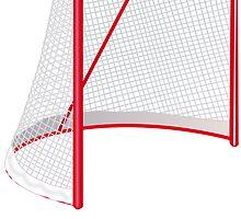 Hockey Net by kwg2200