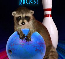 Bowling Rocks Raccoon by jkartlife