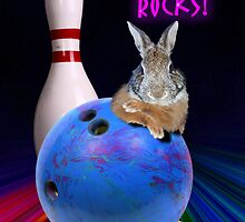 Bowling Rocks Rabbit by jkartlife