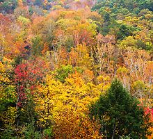Mohican Autumn by Kenneth Keifer