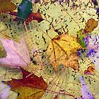 floating debris by Lynne Prestebak