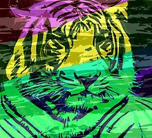 Colors No Lion by Rob Cox