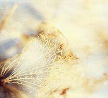 Hydrangea Dreams - JUSTART ©  by JUSTART