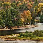 Beach and Little Island in Bracebridge, Ontario, Canada by Gerda Grice