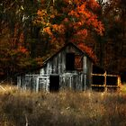 Autumn Barn by Kim  McConnell
