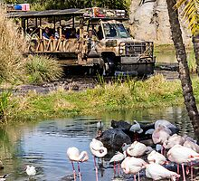 Kilimanjaro Safaris by mister-matt