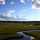 Snake River by skcele