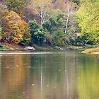 Fall Along The Allegheny River by Geno Rugh