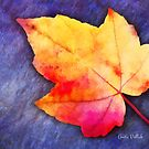 A Colorful Fall Memory by Anita Pollak