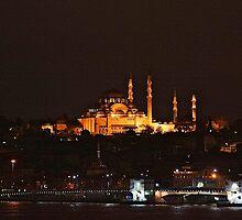 Istanbul At dawn by Nancy Richard