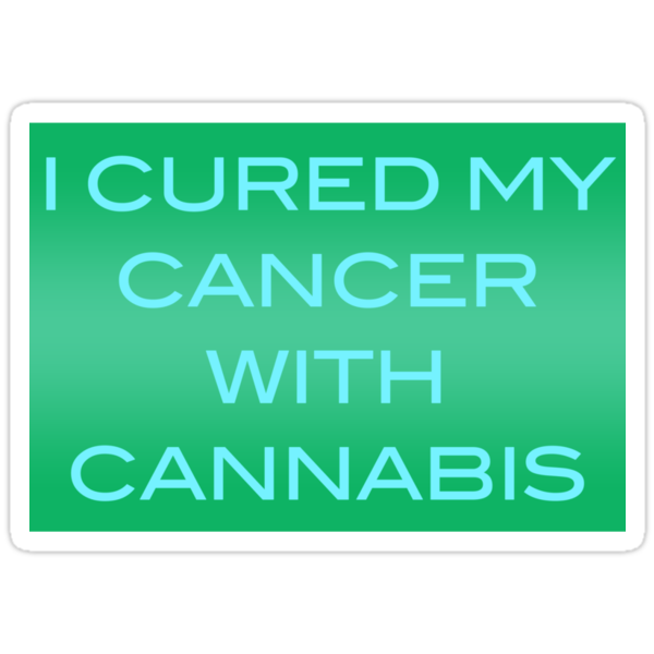 I Cured My Cancer With Cannabis by Taylor Miller