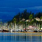 Comox harbor from spit by j Kirk Photography                      Kirk Friederich