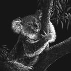 Tree Hugger - koala by Heather Ward