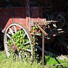Farm Wagon by WildestArt