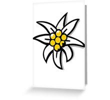 Edelweiss Greeting Card