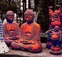 The Magic Buddhas by Brendan Arthur Ring