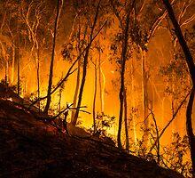 Gully Fire by Jason Ruth