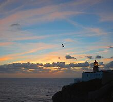 Cape Saint Vincent (Cabo Sao Vicente) Portugal by wraysburyade
