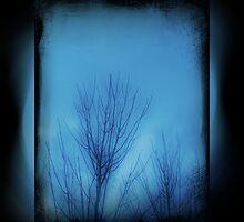 lock is the tree ode to edina by amaeye
