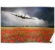 B-17 Poppy Pride Poster