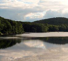Lake View by LCooper