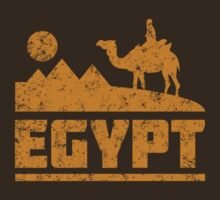 Egypt Pyramids and Camel by whereables
