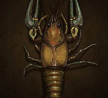 Crayfish Robustus by rcaauwe