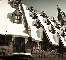 Hogsmeade Village: The Rooftops by Scott Smith